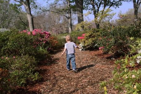 James Arboretum