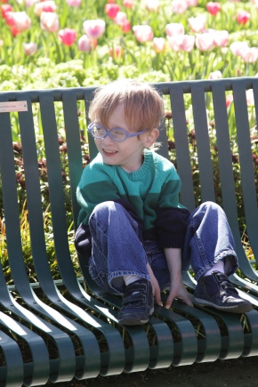 ASD and the Search for AppropriateTherapy